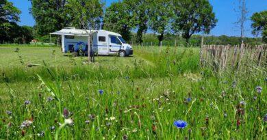 Nieuwe camper locatie in Markelo's boomgaard